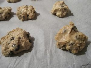 rawoatmealcookies