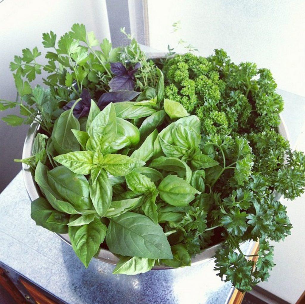 herbs_mixed